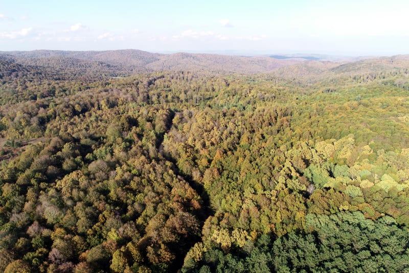Turkey spent $4.66 billion for environmental protection in 2019